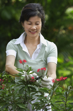 A woman pruning flowers in the garden LANG_EVOIMAGES