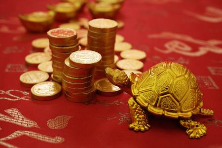 Stilleven van goud schildpad beeldje en gouden munten