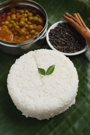vegetable curry: Still life of mixed vegetable curry and basmati rice LANG_EVOIMAGES