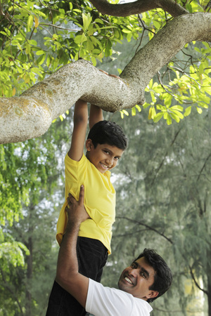 Father helping young boy jump down from tree