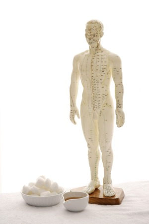 acupuncture model and tools