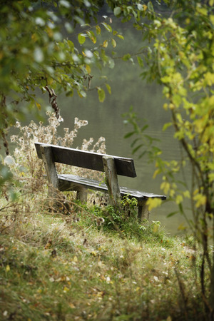 Wooden bench at side of lake Imagens