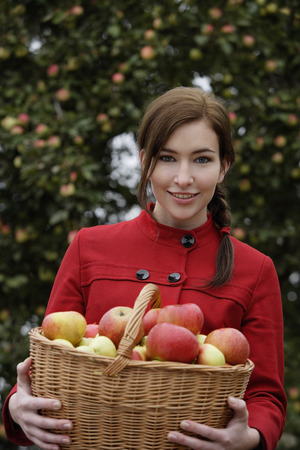 Young woman with basket full of apples Imagens