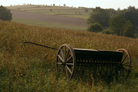 horse-drawn plow
