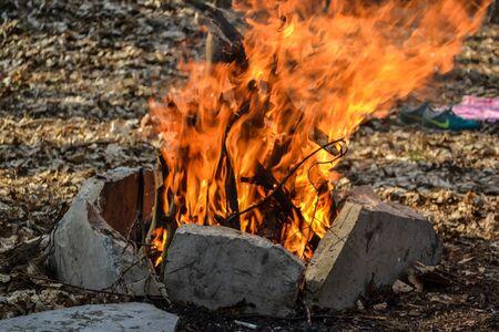 Bonfire Bright fire Archivio Fotografico