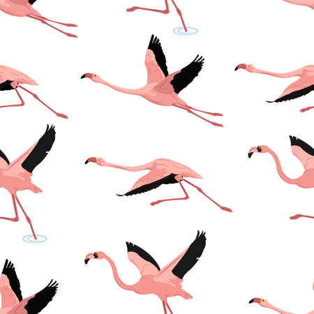 flamingo pattern seamless vector with geometric background