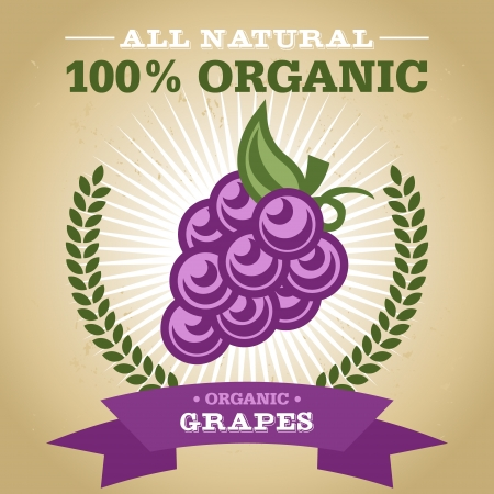 Vintage retro organic fruit design poster with grape icon Vector