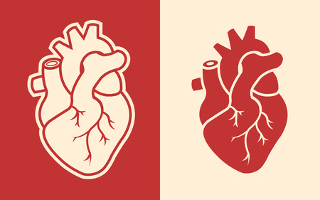 Human heart design icon vector illustration.