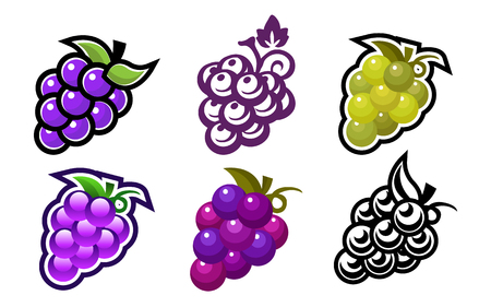 Druiven ontwerp pictogrammen