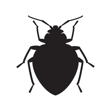 Bedbug insect silhouette illustration.