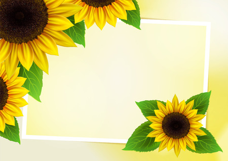 Sunflowers vector background for image and text Vector