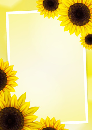 Sunflower vector background for image and text Vector