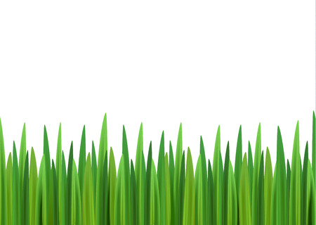 Grass background with empty space for text Illustration