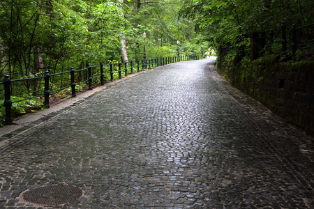 Cobblestoned alley going up the hill through the forest