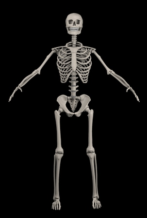 Full human skeleton over black Stock Photo