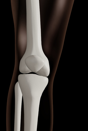 3d rendering of knee joint isolated over black background