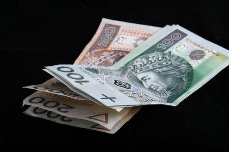 Polish currency, polish new zloty, paper, nbp