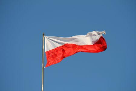 Polish flag on the wind, yellow stars