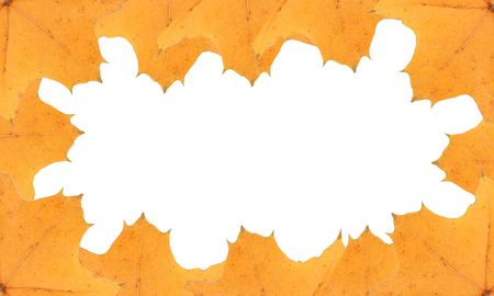 yellow leafs frame, background, insert your text Stock Photo - 3887873