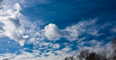 blue sky with beautiful clouds, trees horizon