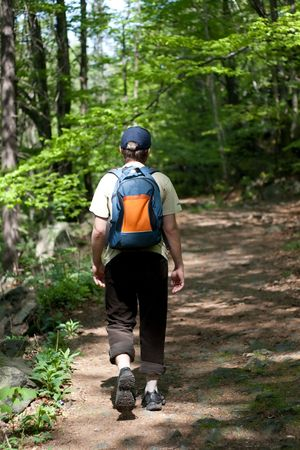 tourist in the woods, mountains, on the trail