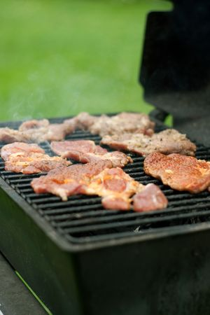 meat on the grill, barbecue, traditional american food