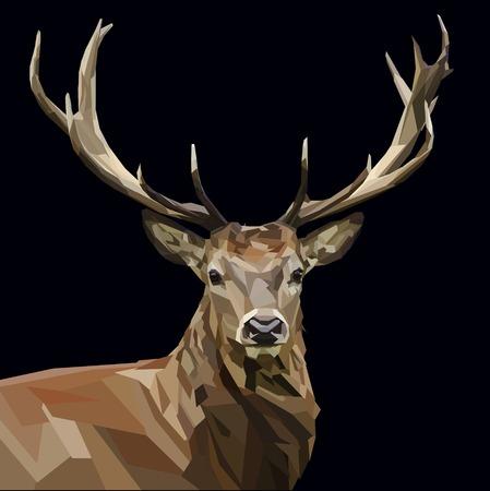 majestueuze herten kop met geweien machtige op donkere achtergrond Stock Illustratie