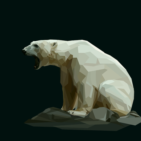floe: white polar bear sitting on dark background