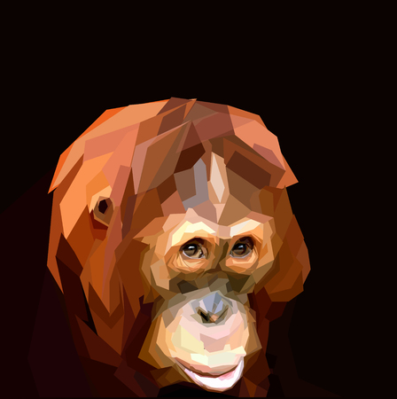 faced: sad faced ape orangutan on dark background