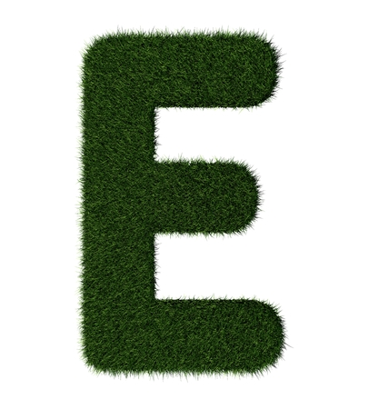 Letter E made with blades of grass