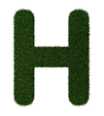grass blades: Letter H made with blades of grass