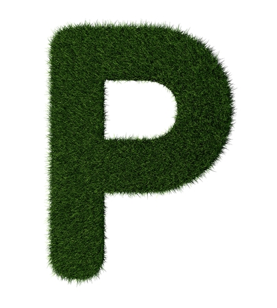 grass blades: Letter P made with blades of grass Stock Photo
