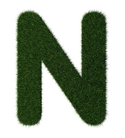 Letter N made with blades of grass