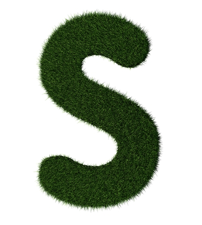 grass blades: Letter S made with blades of grass