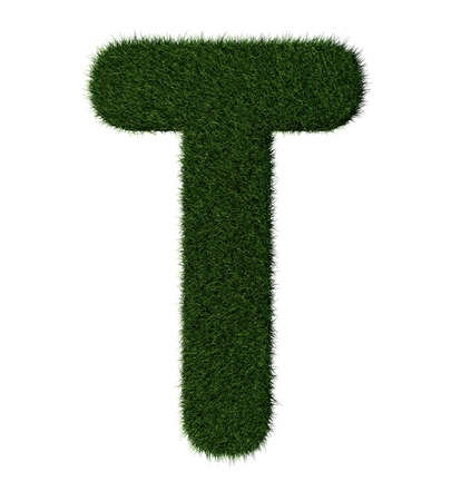 Letter T made with blades of grass