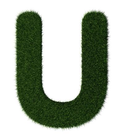 grass blades: Letter U made with blades of grass