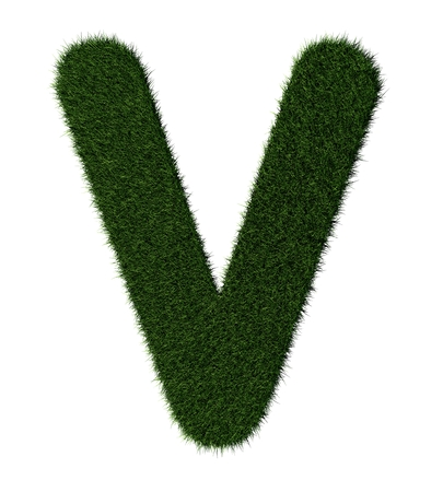 grass blades: Letter V made with blades of grass