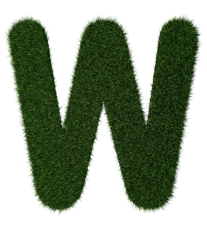 grass blades: Letter W made with blades of grass
