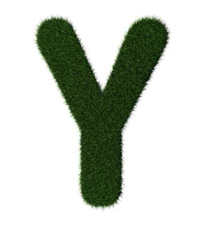 grass blades: Letter Y made with blades of grass Stock Photo
