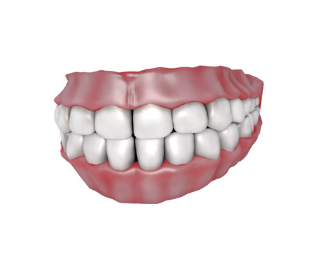 gums: 3d illustration of human teeth with gums