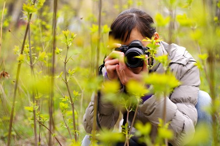 nature photography: photographer �n the nature photographing plants