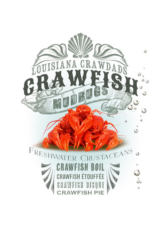 boiling: NOLA Collection Crawfish Stock Photo