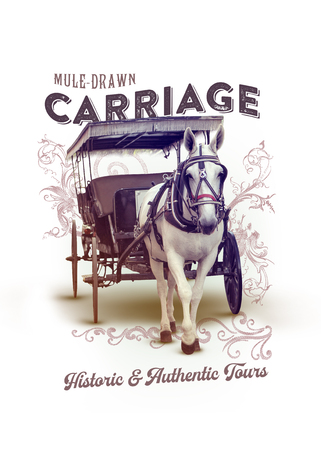 New Orleans Louisiana Culture Collection Mule Drawn Carriage
