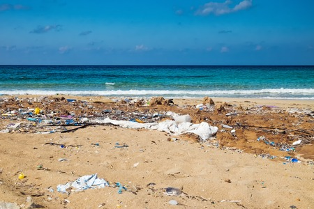 Paradise beach with garbage Imagens