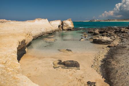 Desert coastline sunny day blue sea