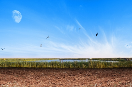 Natural Dry Soil Countryside Background Stock Photo - 13617391