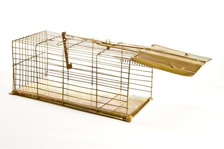 piege souris: Mouse Trap Vieux Isol� sur blanc