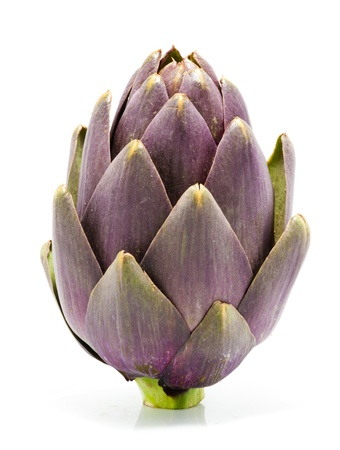 Artichoke on White Stock Photo - 14215763