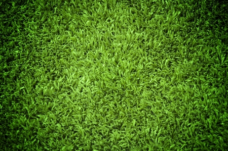 soccer ball on grass: Grass Texture Stock Photo