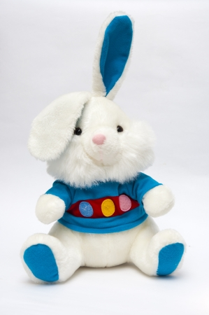 plush toy: Bunny Toy